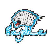 Barys